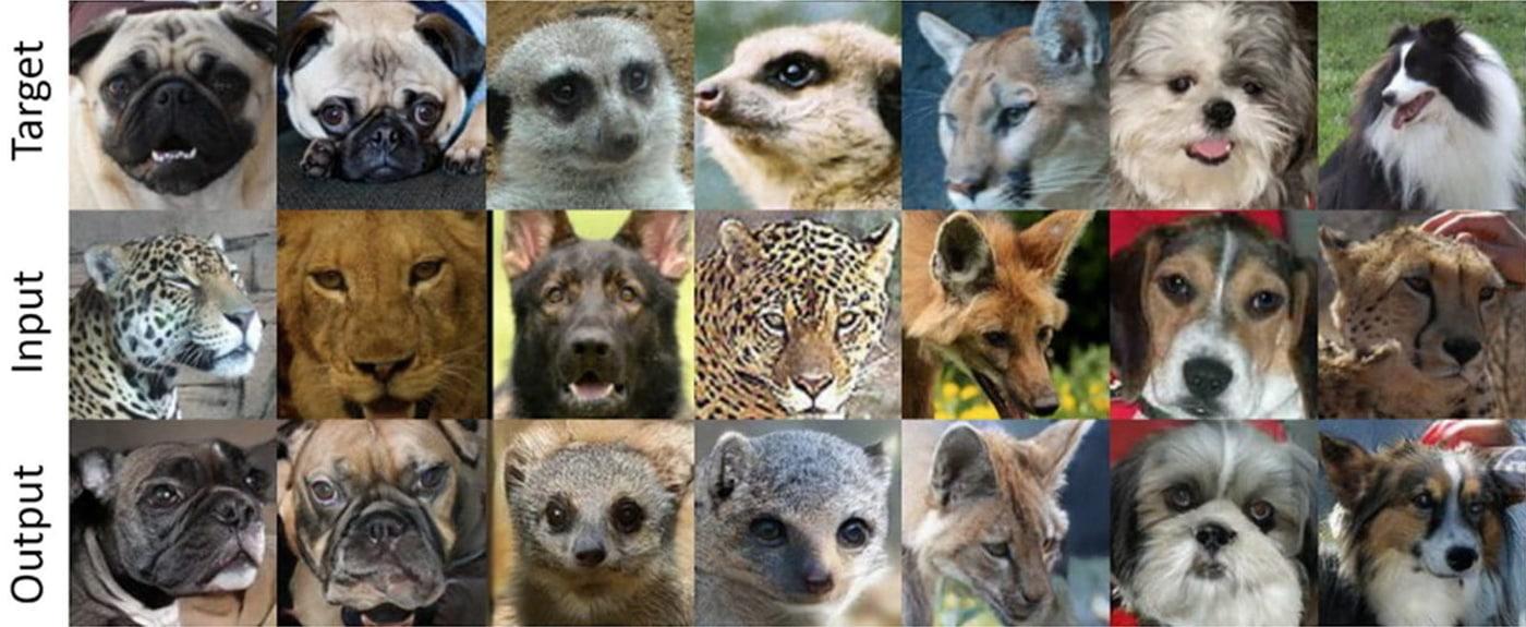"""AI kỳ lạ có khả năng tạo ra hình ảnh các loài vật đang cười, kết quả có thể khiến bạn """"rùng mình"""""""