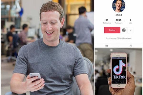 Mark Zuckerberg có tài khoản TikTok bí mật, chuyên theo dõi người nổi tiếng và chó