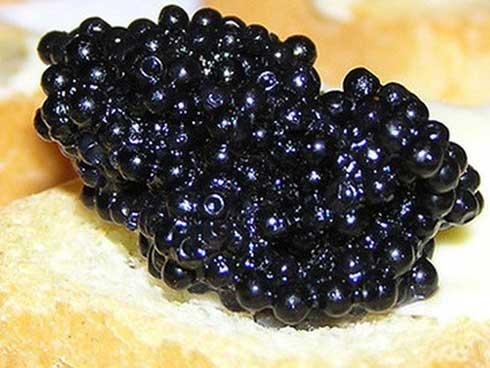 """Trứng cá tầm - """"vàng đen"""" trong giới siêu giàu, vì sao có giá tới 2,3 tỷ đồng/kg?"""