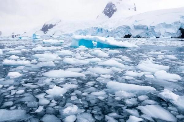 Cú sốc khí hậu mới: Nam Cực thiết lập kỷ lục băng tan nhiều nhất chỉ trong một ngày
