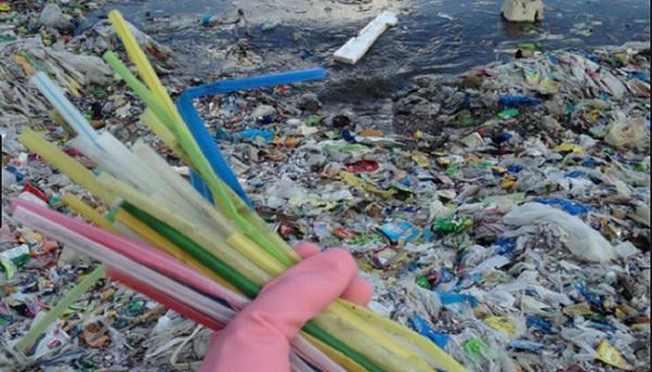 Trung Quốc sẽ cấm hoàn toàn ống hút nhựa vào cuối năm 2020