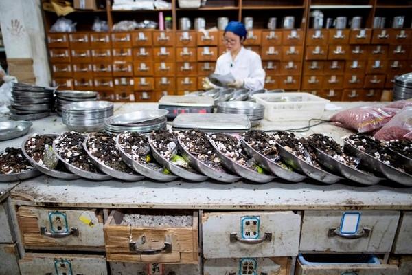 Trung Quốc dùng đông y chữa trị cho hàng chục ngàn bệnh nhân nhiễm Covid-19