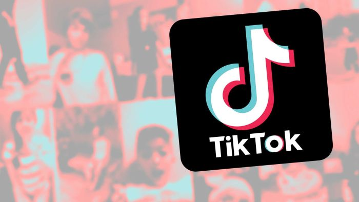CEO Reddit gọi TikTok là 'ký sinh trùng' và là 'phần mềm gián điệp'