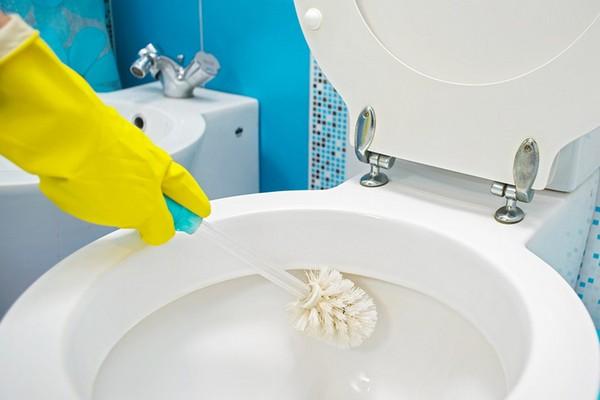 Virus SARS-CoV2 có thể sống trong phòng và toilet nhưng chỉ cần vệ sinh sạch sẽ là diệt được