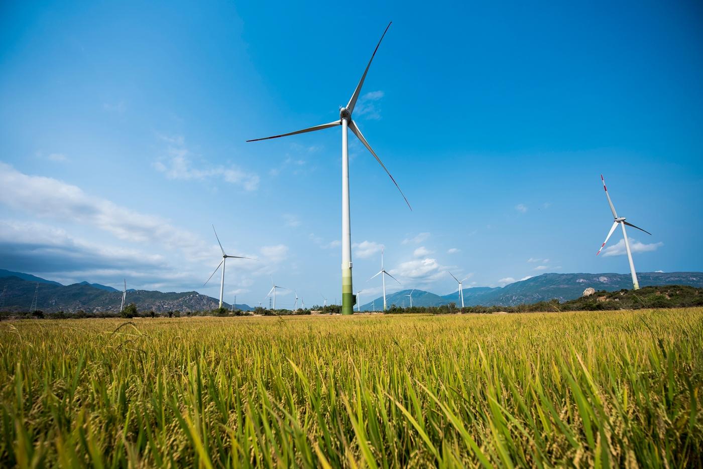 Để điện gió tránh đi vào vết xe đổ của điện mặt trời