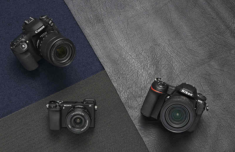 Máy ảnh Canon dẫn đầu cuộc thi Ảnh Báo chí Thế giới 2020, DSLR áp đảo mirrorless