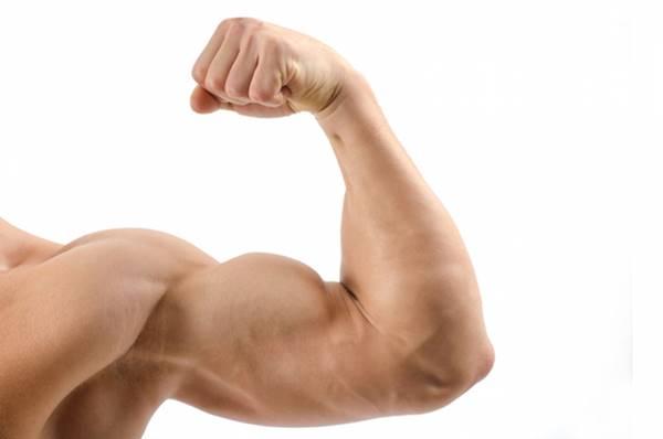 Phát hiện ra liệu pháp gen mới giúp giảm mỡ, tăng cơ
