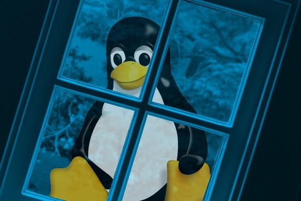 Tại sao số người dùng Linux đang tăng bất thường từ đầu năm 2020?