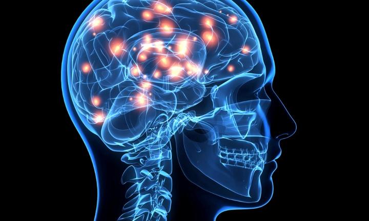 """Đây là cách trí nhớ được """"sáng tạo"""" trong bộ não con người khi chúng ta ghi nhớ một điều gì đó"""