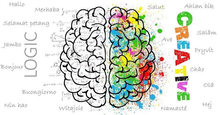 Bạn có biết điều gì xảy ra trong bộ não khi chúng ta học ngôn ngữ?