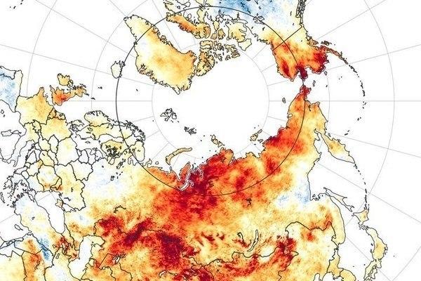 Bắc Cực đang nóng nhanh gấp đôi so với tốc độ trung bình của toàn thế giới. Nguyên nhân do đâu?