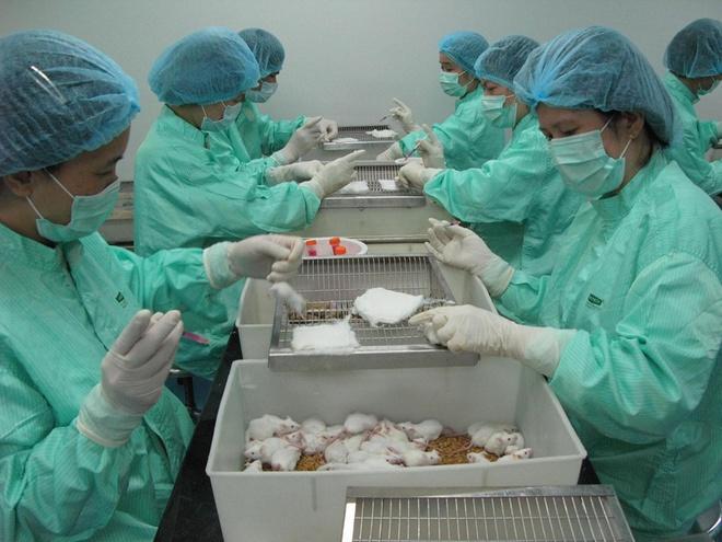 Việt Nam sắp thử nghiệm vaccine ngừa Covid-19 trên người