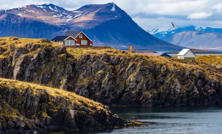 Tại sao Iceland chỉ có mỗi một con muỗi?