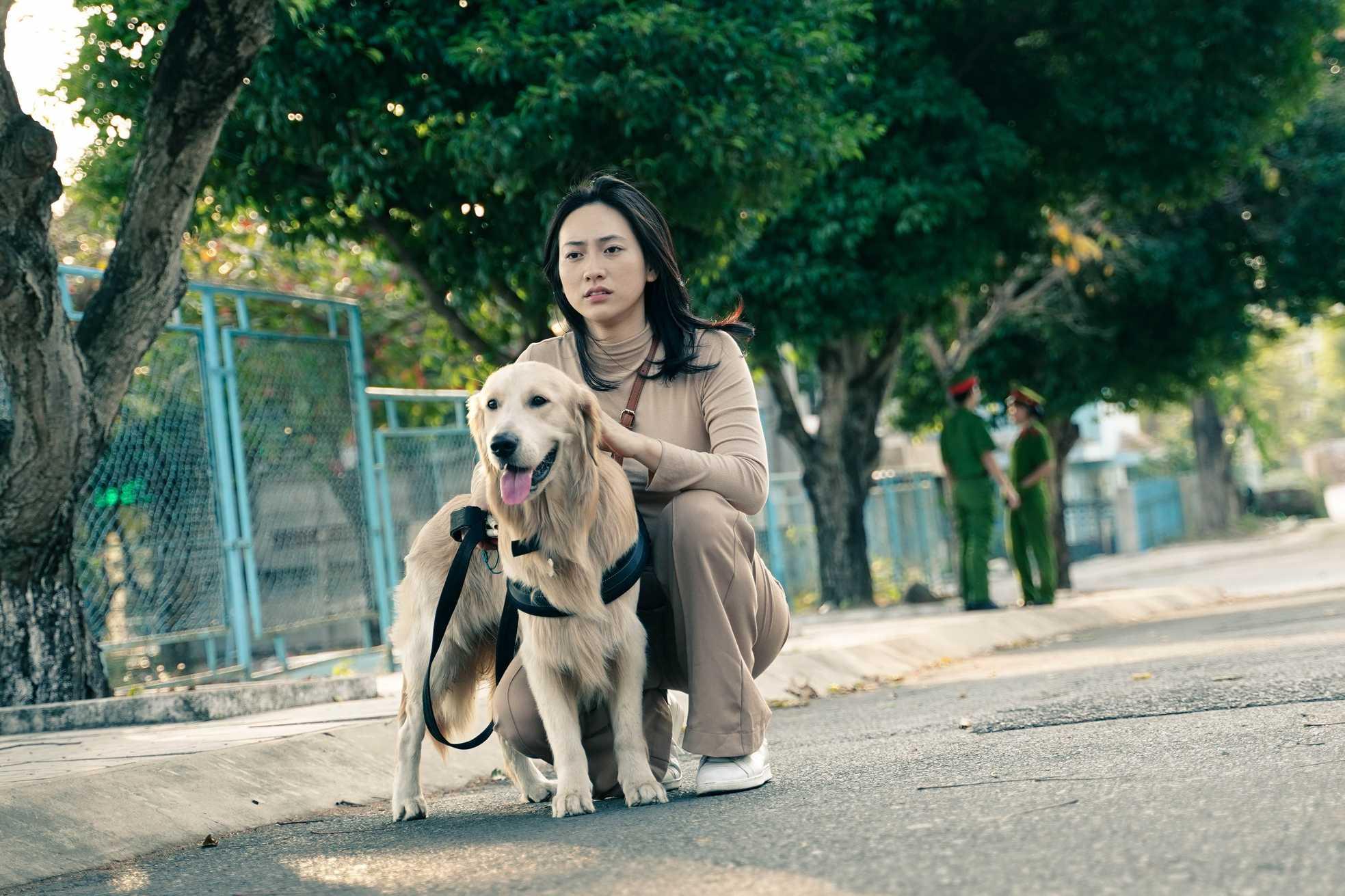 Vì sao 'Bằng chứng vô hình' - phim Việt đáng xem nhất hiện nay lại có doanh thu rất thấp?