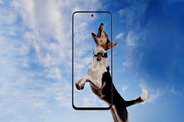 Samsung Galaxy M31s ra mắt: màn hình AMOLED 6.5 inch, 4 camera, pin 6000 mAh