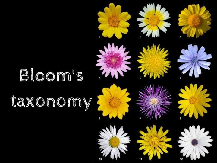 """""""Kim tự tháp"""" nhận thức Bloom là gì? Vì sao công cụ này sẽ giúp bạn học nhanh hơn? (kỳ 2)"""