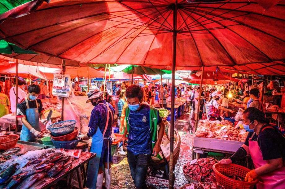 Chợ tươi sống tác động đến con người và động vật hoang dã như thế nào?
