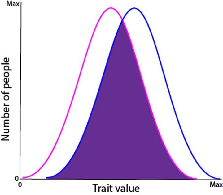 biểu đồ nam nữ