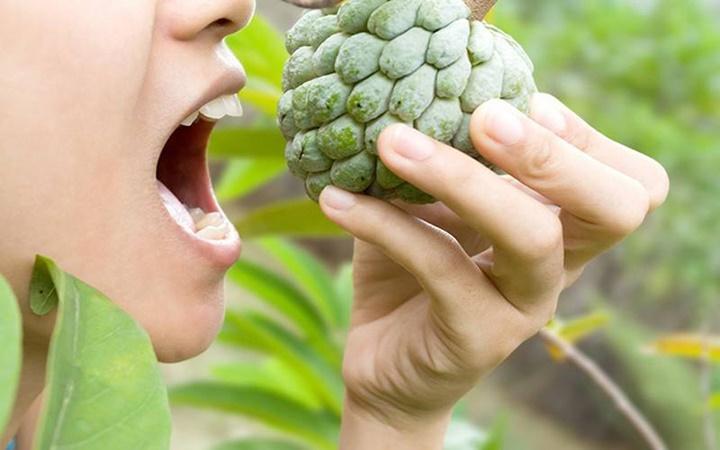 Những người không nên ăn quả na (mãng cầu)