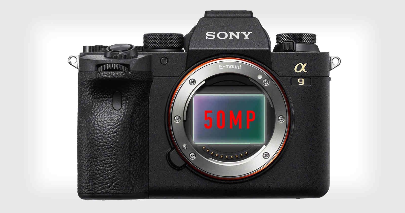 """Sony đang phát triển mẫu Alpha quay 8K, sẽ là """"sát thủ Canon R5""""?"""