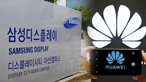 """Mỹ nới lỏng """"vòng kim cô"""", cho Samsung Display bán panel cho Huawei"""