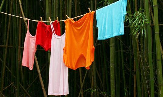 Quần áo sợi tre, vải sợi tre có thực sự làm từ cây tre không