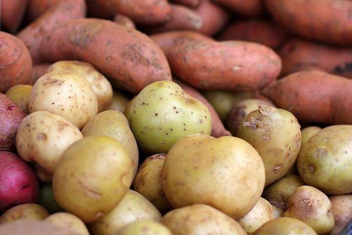 Khoai lang và khoai tây khác nhau về dinh dưỡng như thế nào?