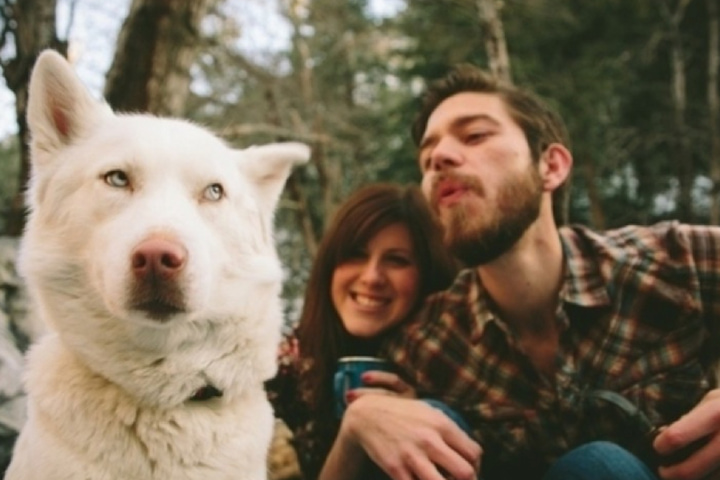 Cún cưng có thể ghen khi thấy bạn đang nựng một con chó khác