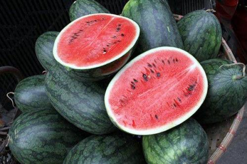 Một quả dưa hấu có bao nhiêu nước, và có phải dưa hấu nào cũng hình tròn?