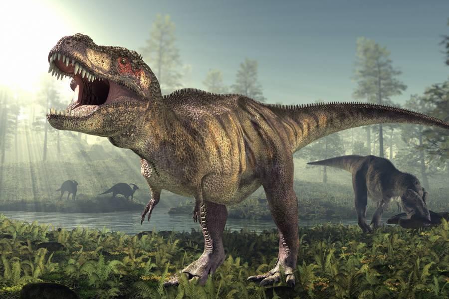Có tới 2,5 tỷ con khủng long T-Rex từng tung hoành ngang dọc, thống trị trái đất