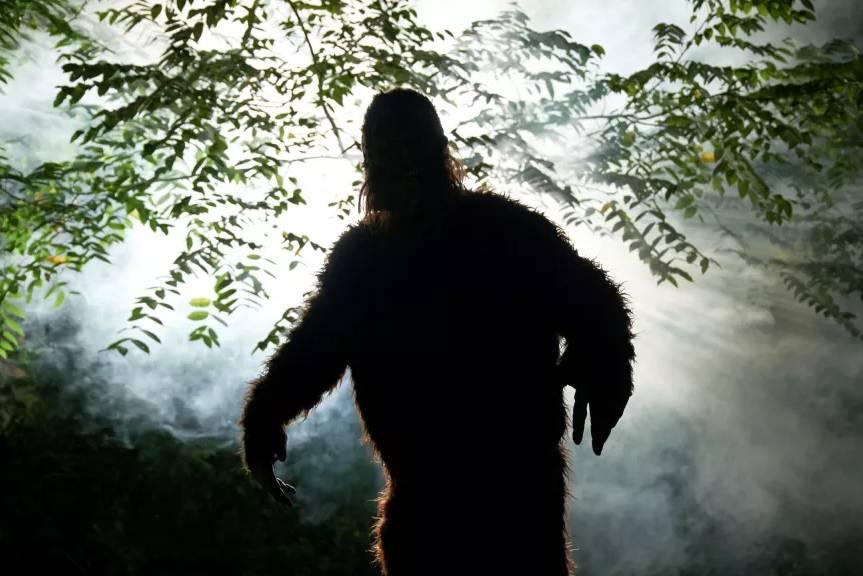 Quái vật Bigfoot gây xôn xao nước Mỹ suốt nhiều thập kỷ liệu có thật không?