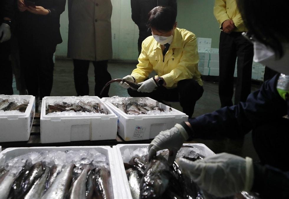 Người Hàn e ngại sản phẩm thủy sản Nhật Bản do kế hoạch đổ nước phóng xạ ra biển