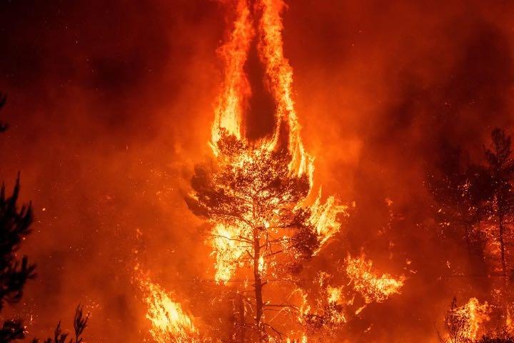 """Trái Đất đang hấp thụ một lượng nhiệt """"chưa có tiền lệ"""""""