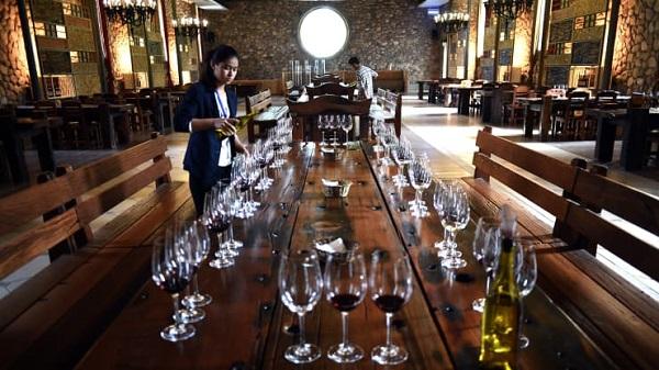 Rượu vang Trung Quốc tham vọng sánh ngang với vang Bordeaux của Pháp