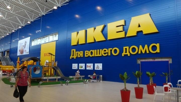 Hãng nội thất IKEA bị cáo buộc dính líu tới khai thác gỗ trái phép