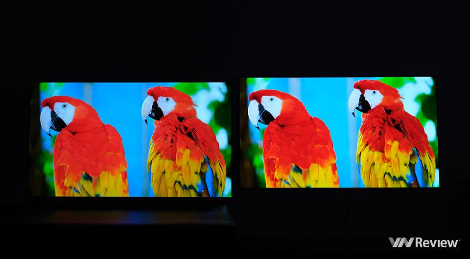 Đọ LG G1 và LG GX 65 inch: lần đầu so tấm nền OLED Evo thế hệ mới và đời cũ - VnReview 2020 12