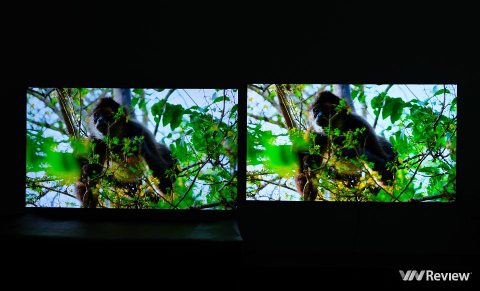 Đọ LG G1 và LG GX 65 inch: lần đầu so tấm nền OLED Evo thế hệ mới và đời cũ - VnReview 2020 11