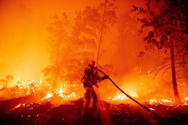 Cháy rừng sẽ ngày càng phổ biến khi Trái đất ấm lên