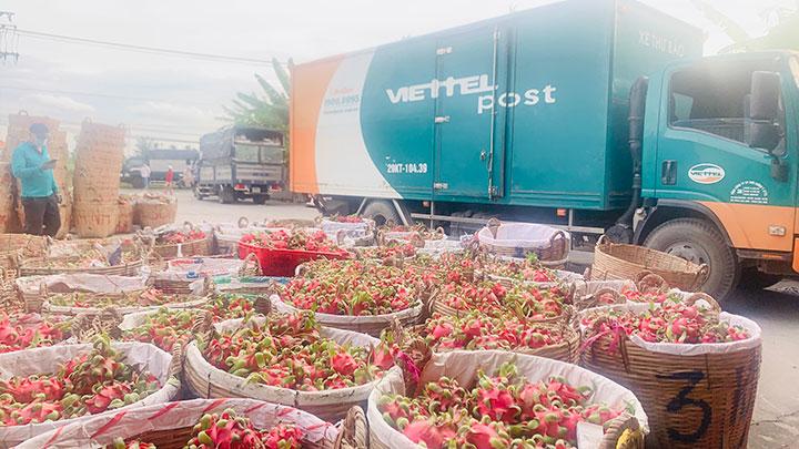 Viettel Post nhận 15 tấn hàng gửi tặng người khó khăn ở TP.HCM