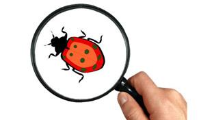 """LogiGear VN tổ chức thi """"săn"""" lỗi phần mềm 2012"""