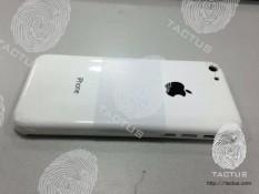 Lộ diện iPhone giá rẻ với mặt sau làm bằng nhựa?