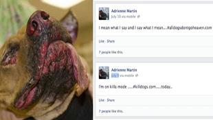 Khoe tra tấn chó trên Facebook, một phụ nữ bị bắt