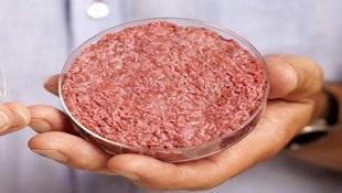 Thịt bò nhân tạo đầu tiên thế giới