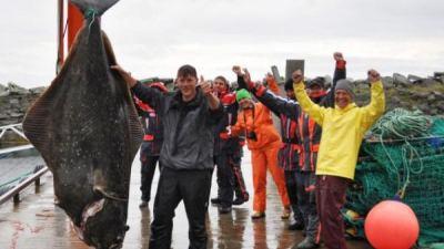 """""""Choáng"""" với con cá bơn nặng 232 kg"""