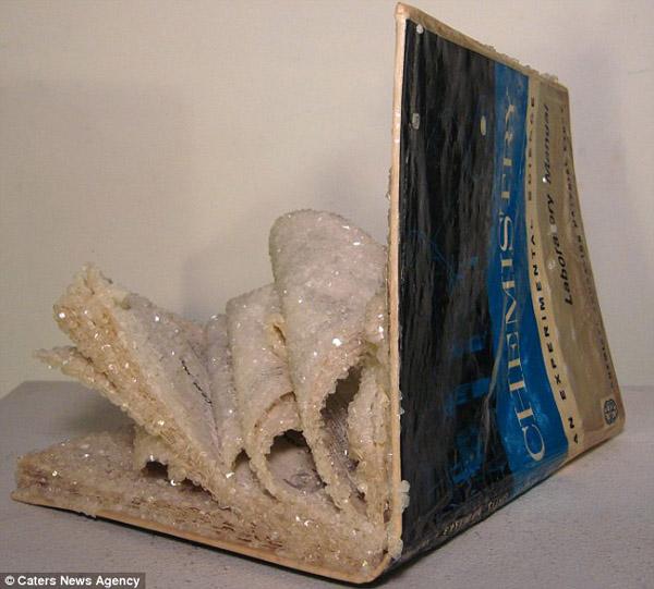 Những cuốn sách độc đáo từ bột giặt