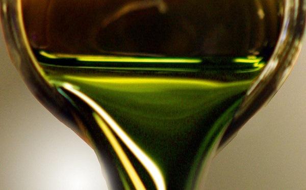 tảo biển năng lượng xanh sạch của tương lai dầu thô