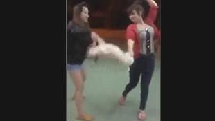 Video nóng trên mạng: Hai cô gái Việt quăng quật chó con như giẻ rách