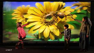Màn hình 3D Full HD không kính lớn nhất thế giới