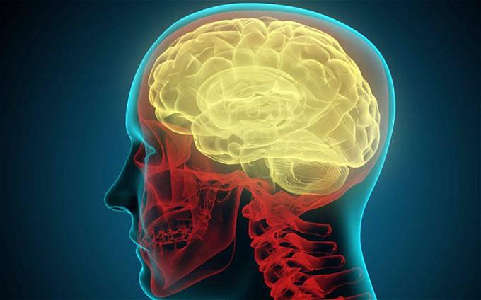 Siêu máy tính mất tới 40 phút để mô phỏng 1 giây của não người
