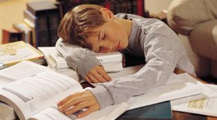 Ép trẻ làm quá nhiều bài tập về nhà: Lợi bất cập hại